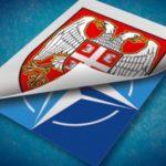Filip Svarm: il prossimo scoop sarà l'ingresso della Serbia nella NATO
