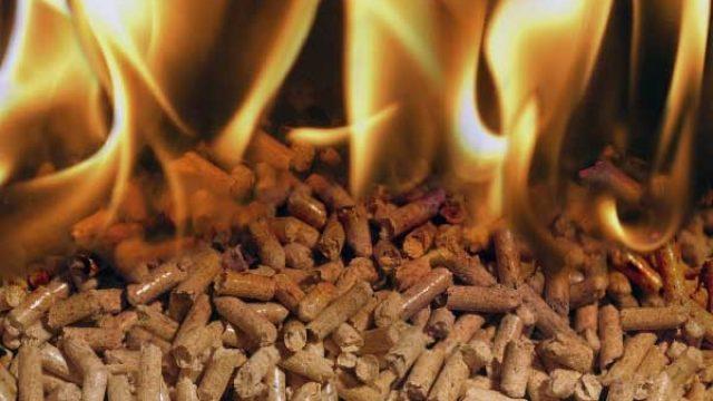 biomasse.jpg
