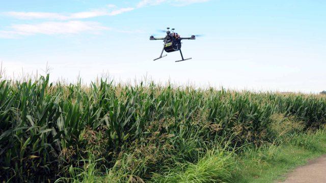 drone-mais.jpg