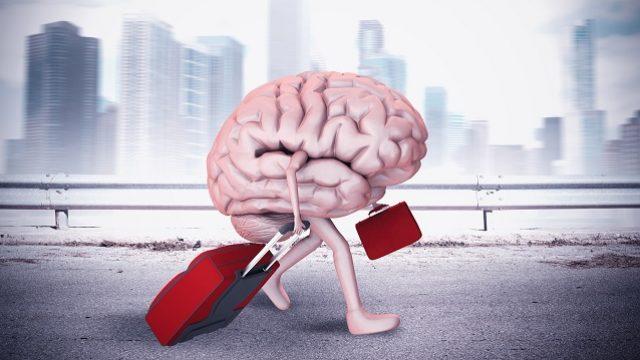 fuga-dei-cervelli.jpg