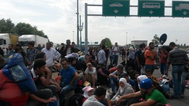 profughi-1.jpg