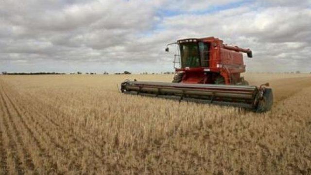 raccolto-agricolo.jpg
