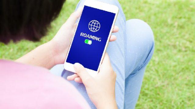 roaming_3.jpg